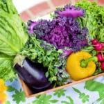 Alimentazione e dieta vegetariana non solo una scelta etica?