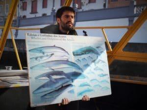 in partenza per il whale watching nel mare di Azzorre