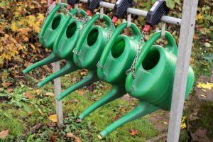 Risparmiare l'acqua quando si curano i fiori o i nostri giardini