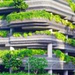 Orti e giardini urbani è tempo di incentivi