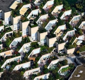verde in città tra orti e giardini urbani