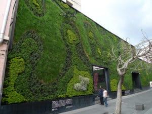 un giardino verticale diventa un'opera d'arte