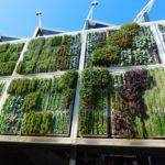 Giardini verticali quando l'ecodesign si fa green
