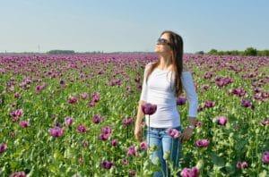 Regalare fiori: tulipani