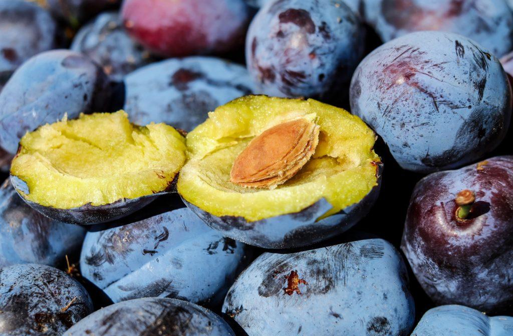 le prugne aiutano a ritrovare la normale regolarità intestinale