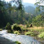Giornata europea dei parchi: un modo per conoscerli ed amarli