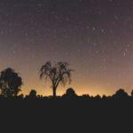 Notte di San Lorenzo: tra stelle e inquinamento luminoso
