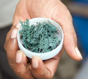 alga spirulina un rimedio naturale per dimagrire e depurarsi