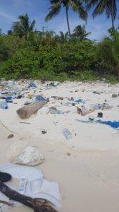 Emergenza plastica negli oceani