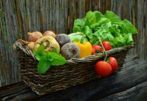 Verdure dall'orto