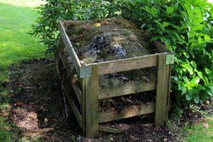 La magia del compost
