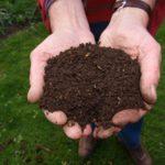 Cinque concimi naturali per i nostri giardini