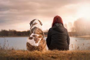 Esperienza di pet-therapy