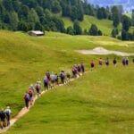 I benefici ecologici e psicofisici della camminata
